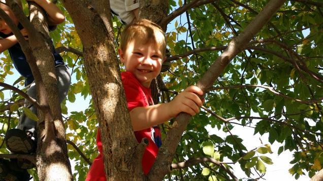 My Nephew Bradley